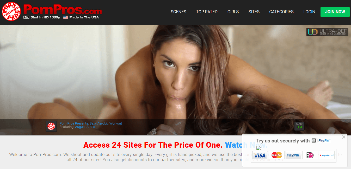 Screenshot pornprosnetwork.com