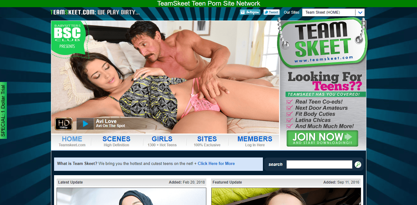 Screenshot teamskeet.com
